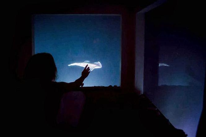 manta-resort-underwater-room-5