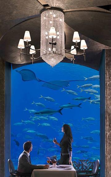 underwater hotel dubai 13 Atlantis: Dubais underwater hotel