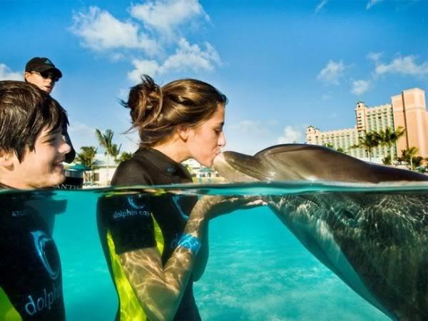 underwater hotel dubai 18 Atlantis: Dubais underwater hotel