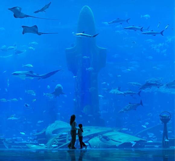 underwater hotel dubai 20 Atlantis: Dubais underwater hotel
