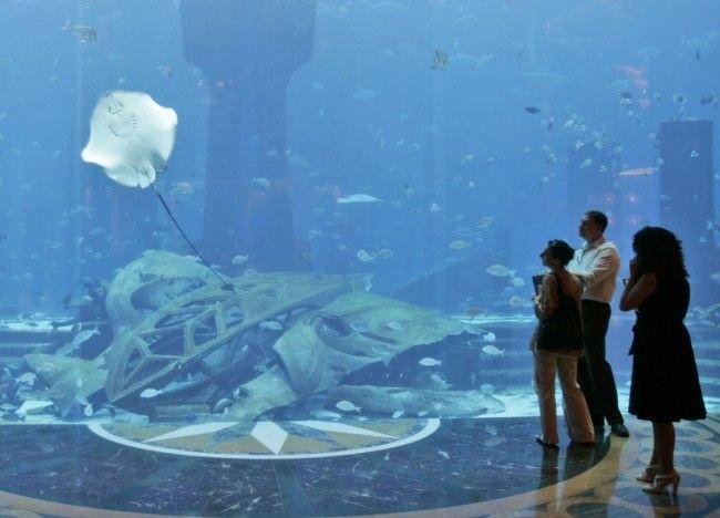 underwater hotel dubai 23 Atlantis: Dubais underwater hotel